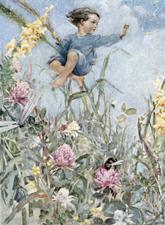 Lavender (image)