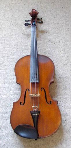 Viola (image)