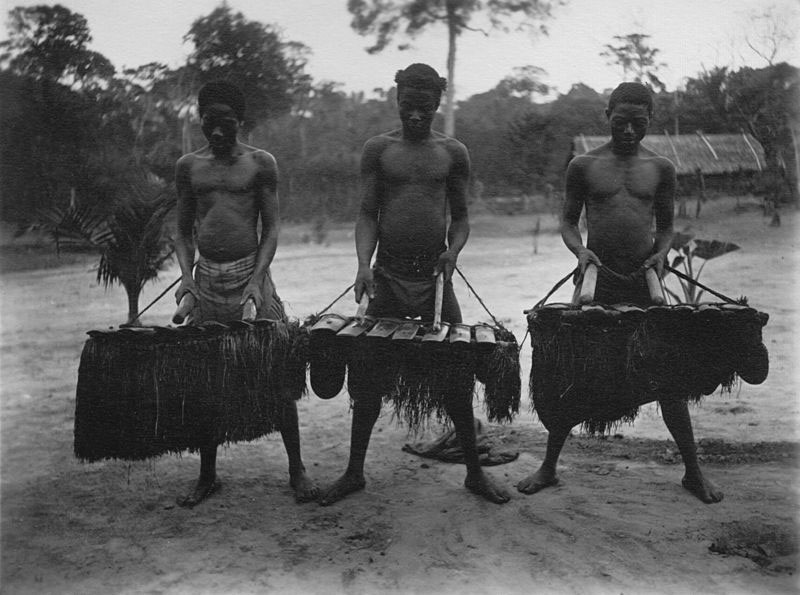 Xylophone, Cameroons (image)