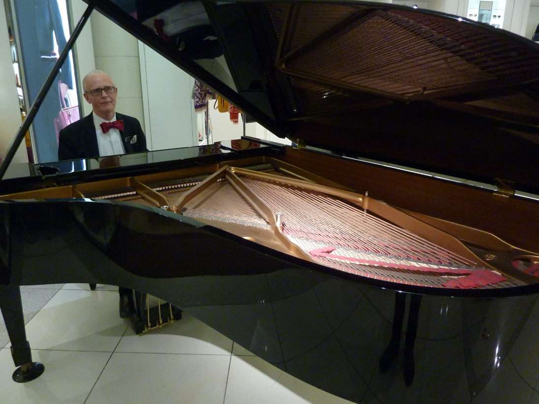 Interior of Steinway grand piano (image)